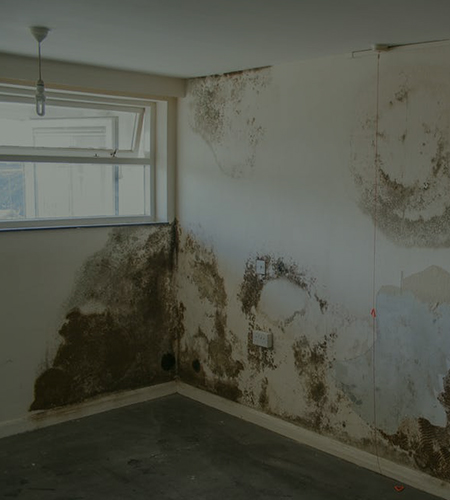 Common issues with your home